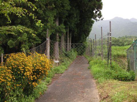 高原越えの旧道入口