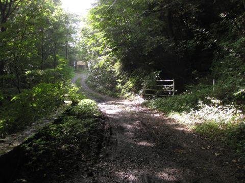 白岩の旧国道