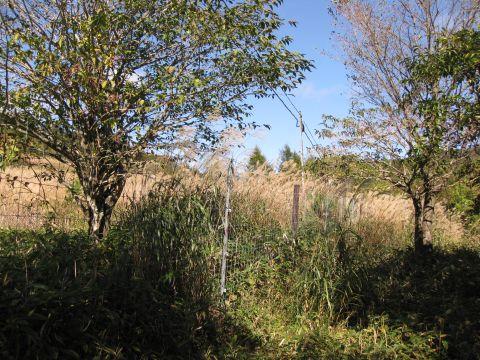 鶏頂開拓のフェンス