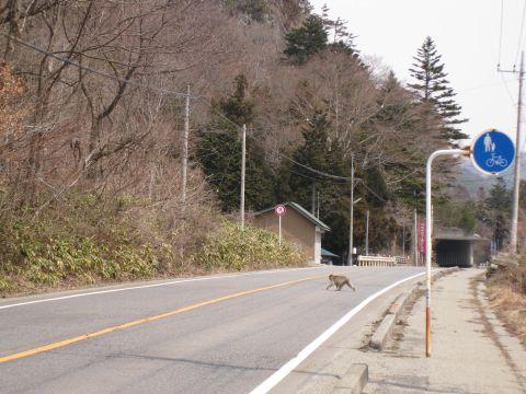 国道121号 横川