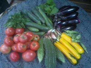 野菜セット 2011,8,21