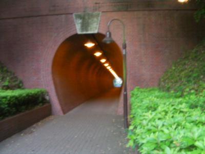 0516トンネル