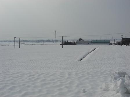 丸岡墓参り2011 016