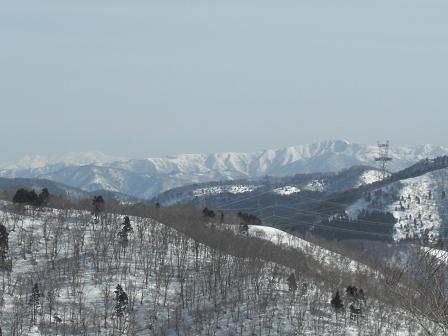 赤坂山2010 015