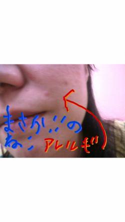 2011053000360000_convert_20110530175605.jpg