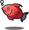 bn024fish_a.png