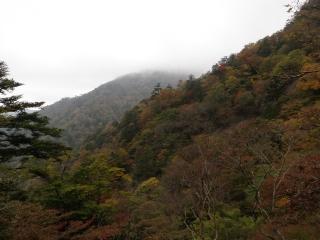 20101025d.jpg