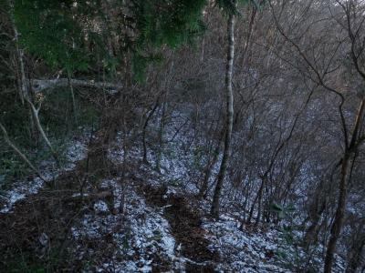 20111211a.jpg