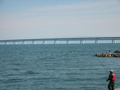 田尻漁港から見た関空橋