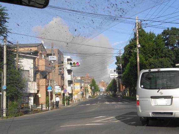 黒いのは 火山灰です