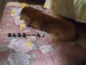 024_20081210211038.jpg