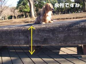 047_20090112202934.jpg