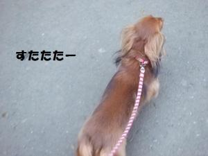 058_20090112203007.jpg