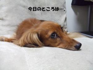 017 ぺ