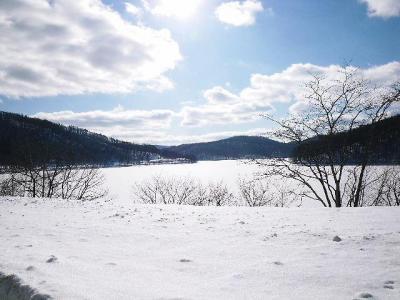 ワラビ平~小石川方面を望む