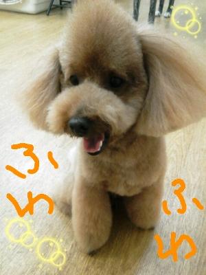rakugaki_20120225_0003.jpeg