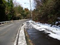 1020019_残雪の道