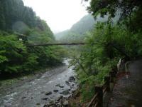 丹沢帰り吊り橋