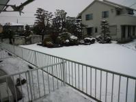 120229 うるう年の雪
