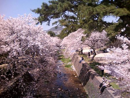 2011_04_12_1.jpg