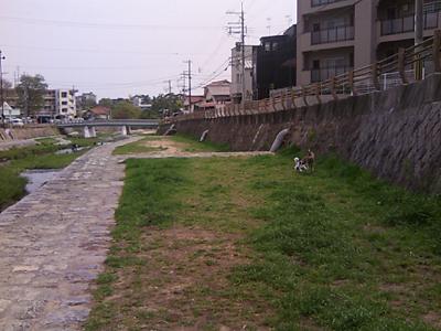 2011_04_26_1.jpg