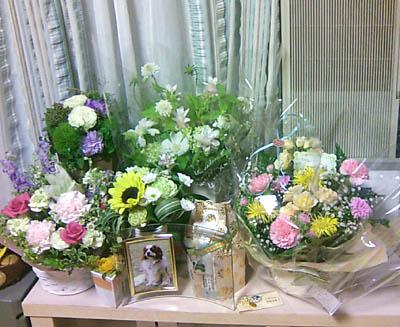 四十九日の花