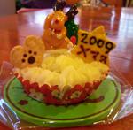 xmas_cake_ss.jpg