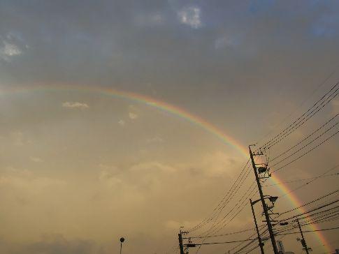 1004虹