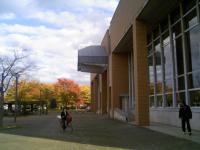 図書館と紅葉