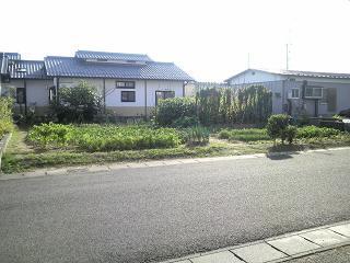 P1000404.jpg