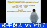 動画小501