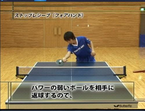 遊澤亮驚異の卓球上達法 サンプル写真大 11