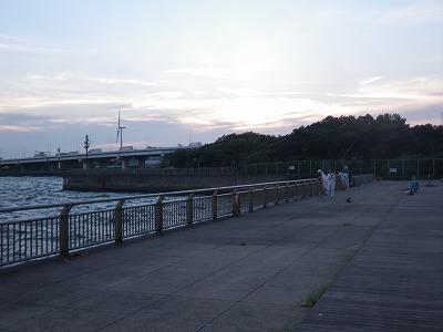 IMGP2206.jpg