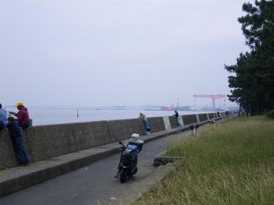 IMGP3291.jpg