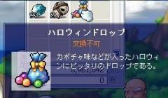 Maple2012@.jpg
