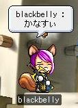 Maple2014@.jpg