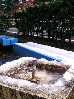 県庁前公園1120-1