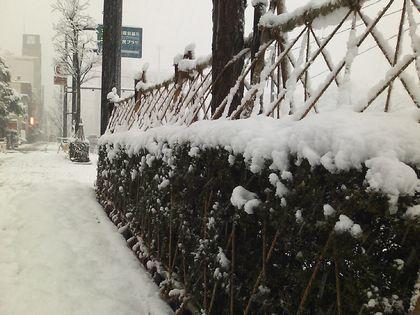 snow091217-01.jpg