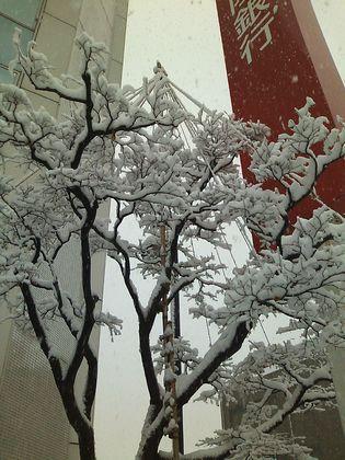 snow091217-02.jpg