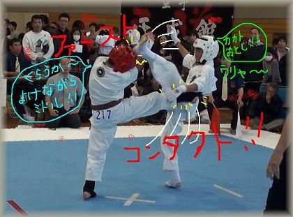s-1Dyokenagarase1.jpg