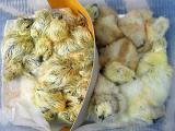 生まれたばかりの烏骨鶏のヒヨコ