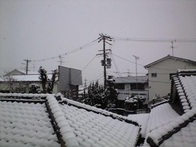 PAP_0045.jpg