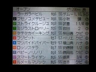 オープン2着(´Д`)_090110