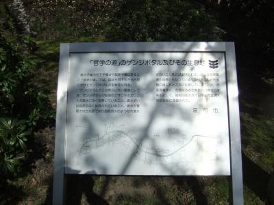 2010_04040079.jpg