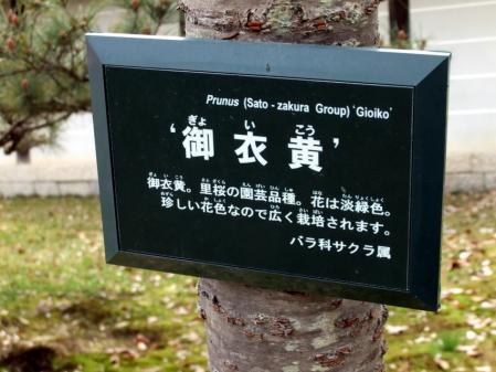 2010_04190014.jpg