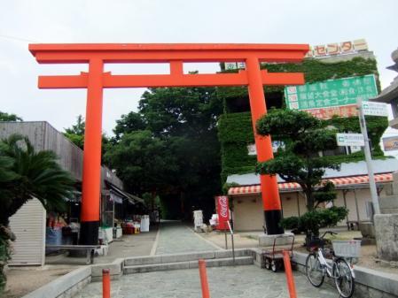 2010_06080020.jpg