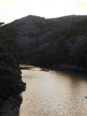 2011_0104ブログ0071