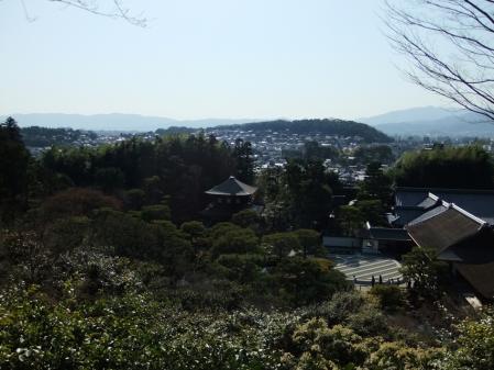 2011_0406ブログ0043