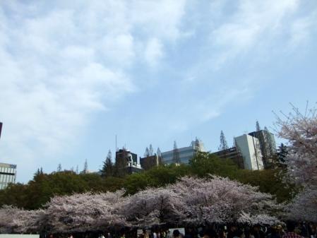 2011_0410ブログ0044