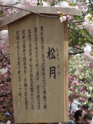 2011_0417ブログ0065